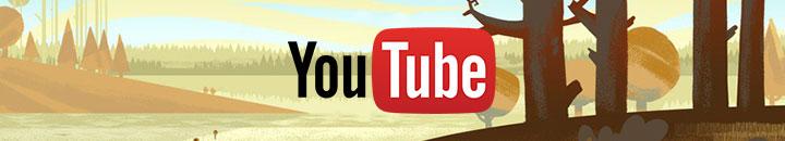 Видео - раздел